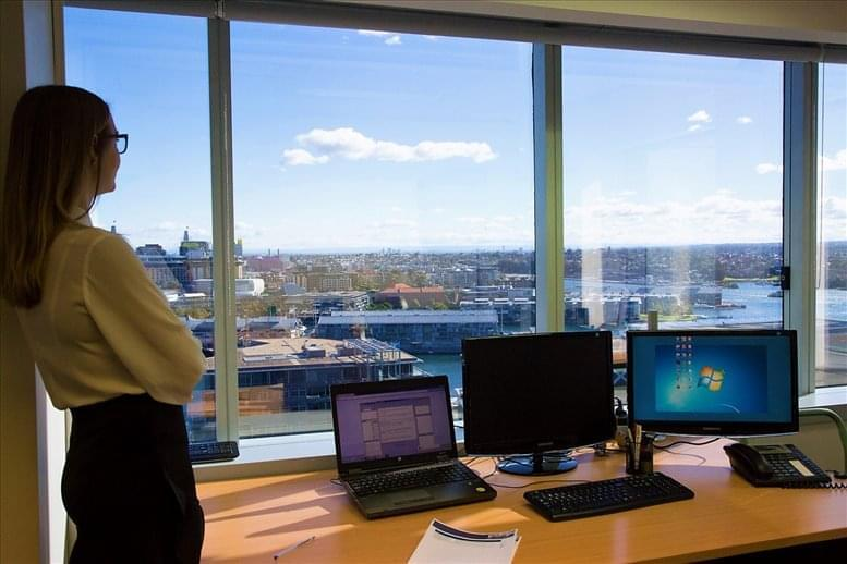 This is a photo of the office space available to rent on Level 14, Lumley House, 309 Kent St