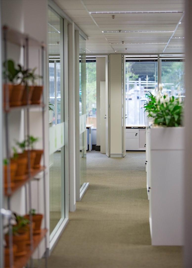 299 Elizabeth St Office Space - Sydney