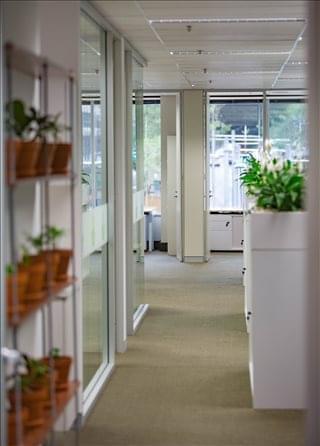 Office Space 299 Elizabeth Street