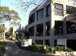 12 Tryon Rd Office Space - Lindfield
