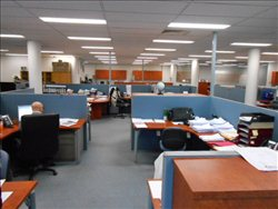 Unit 2, 15 Rodborough Rd Office for Rent in Frenchs Forest