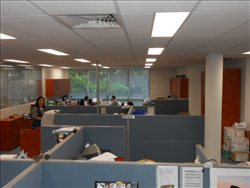 Photo of Office Space available to rent on Unit 2, 15 Rodborough Rd, Frenchs Forest