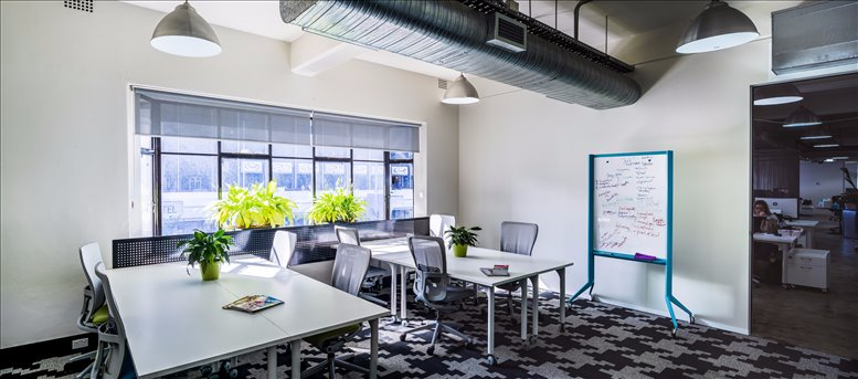 This is a photo of the office space available to rent on 101 William St, Darlinghurst
