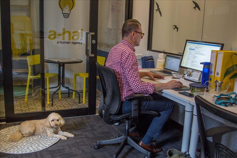 Office for Rent on 6-10 Middlemiss St, Lavender Bay Sydney
