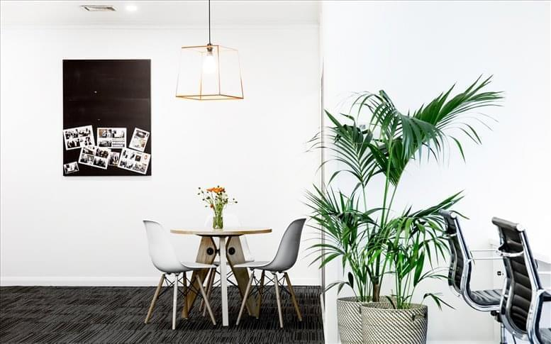 Picture of 6 Riddell Pde, Elsternwick, VIC Office Space available in Melbourne
